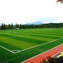 Что такое спортивный газон?