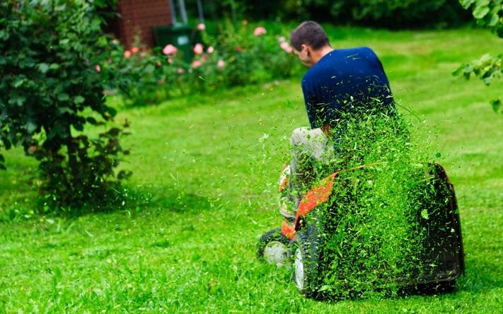 Alamy-ride-on-lawn-xlarge