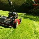 Как правильно стричь газон?