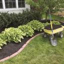 Как оздоровить свой газон?